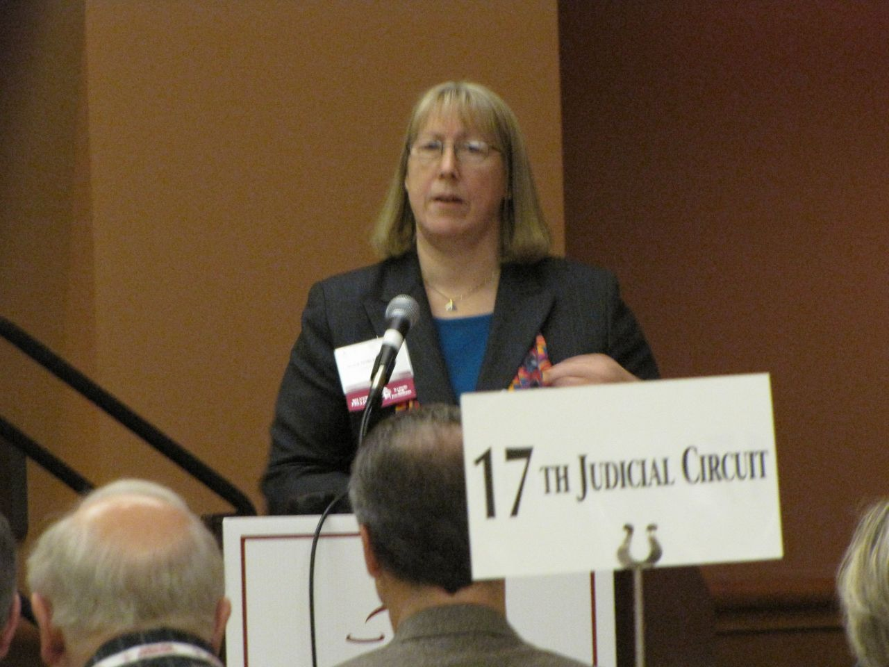 SIU Professor Alice Noble-Allgire speaks about diversity initiatives.