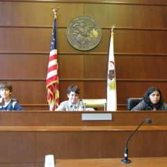 ISBA Law and Leadership Institute visits Daley Center Appellate Court photo gallery